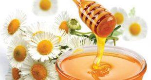 قیمت عسل مرکبات طبیعی و خالص