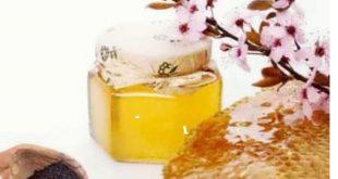 قیمت عسل طبیعی بصورت عمده و بسته بندی