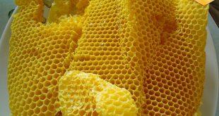 موم عسل