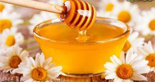 بهترین قیمت فروش عسل طبیعی