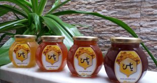 قیمت انواع عسل طبیعی بسته بندی شده