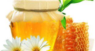 خرید انواع عسل