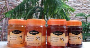 بسته بندی انواع عسل