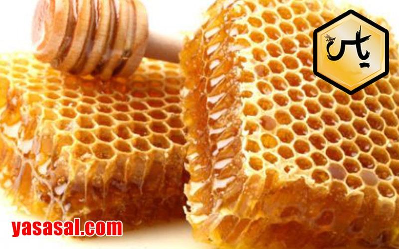 فروش اینترنتی عسل وحشی