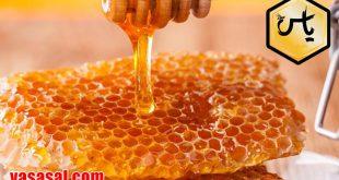 شرکت پخش عسل گون